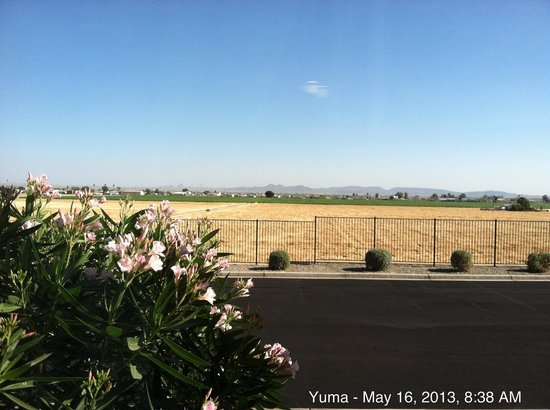 Candlewood Suites Yuma: View from my window.