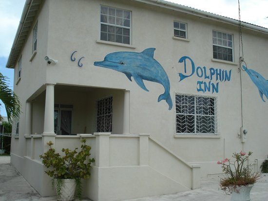 Dolphin Inn Picture