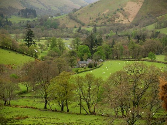 Neuadd Arms Hotel : Cambrian Hills