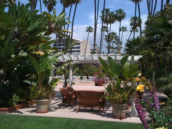 Town and Country San Diego: Relaxing sitting areas65975739,65975737