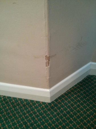 TLH Carlton Hotel: Many pieces of wall flaking off in lounge