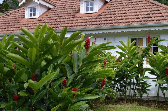 Jardín Balata: La maison du jardin