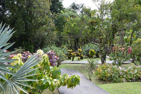 Jardín Balata: Allée royale