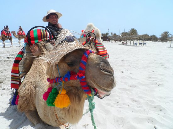 IBEROSTAR Mehari Djerba : Relaxin on the Beach