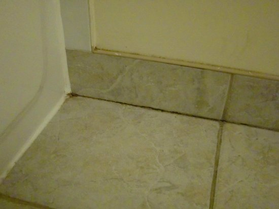 Hotel Faubourg Montreal : Dirty bathroom tiles and grout.
