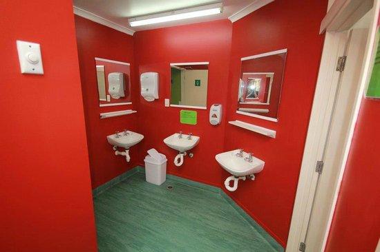 Rotorua Downtown Backpackers : Bathroom