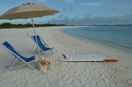 Posada La Cigala: beach service