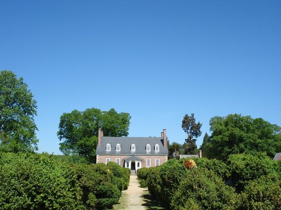 Gunston Hall: View of the house from the overgrown English boxwood formal garden