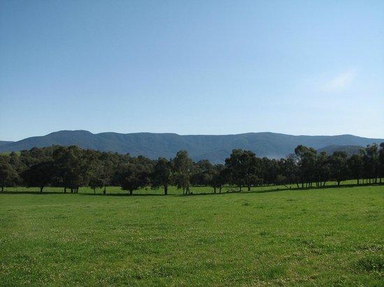 Langbrook Estate Cottages: Enjoy stunning views over mountain ranges