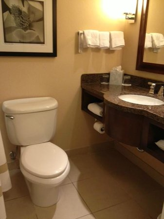 Atlanta Marriott Buckhead Hotel & Conference Center: Bathroom