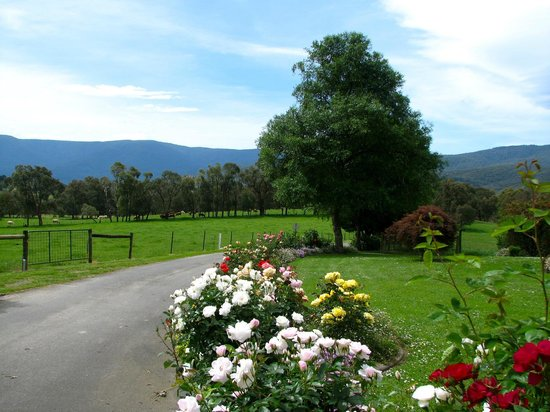 Langbrook Estate Cottages: Property grounds and views
