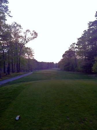 Marriott's Fairway Villas: Golf Course