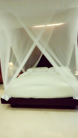 Tonys Villas & Resort: deluxe room