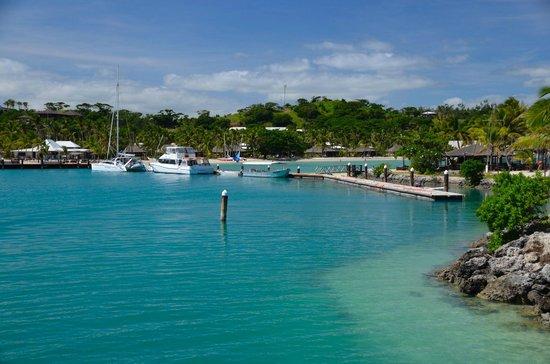 Musket Cove Island Resort & Marina: marina