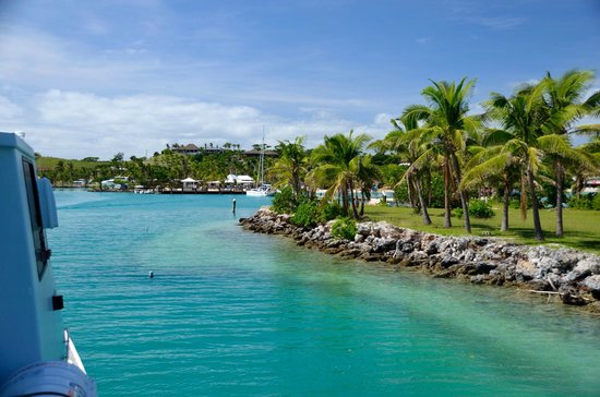 Musket Cove Island Resort: musket cove