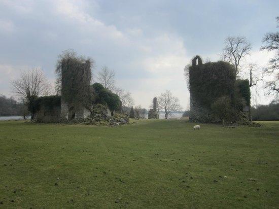 Temple House: Castle ruins