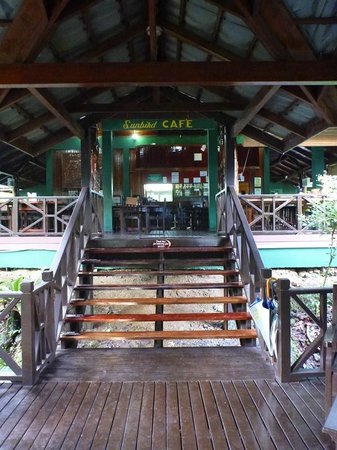 Tabin Wildlife Resort: Cafe at the lobby area