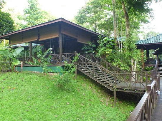 Tabin Wildlife Resort: View of cafe