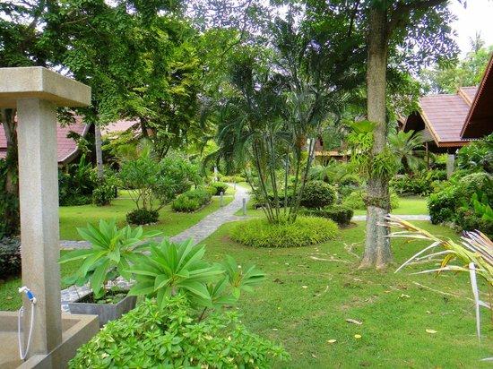 Baan Laem Noi Villa's : The garden is just amazing! So lush and green!