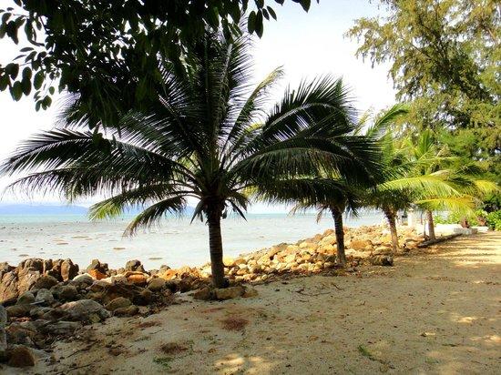 Baan Laem Noi Villa's: Beach.