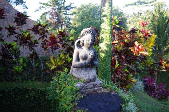 Villa Semana: Территория