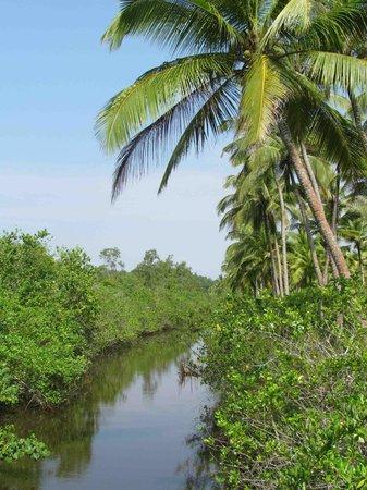 Idle Tours: beautiful waterways...