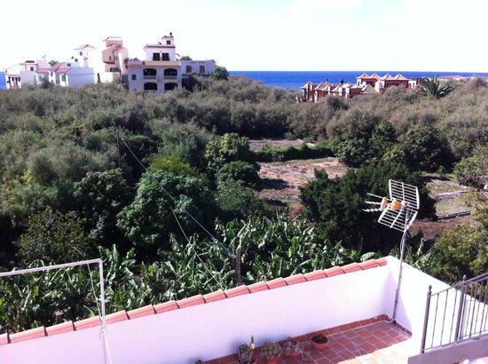 Omayra Hotel : Blick auf Bananenplantage von Terrasse