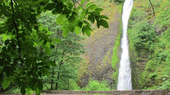 Hood River, Oregon: More falls