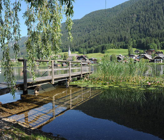 Seehaus Winkler: Unser privater Badestrand mit sehr flachem Ufer.