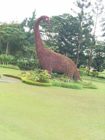 Cianjur, Indonesia: Dinasaur