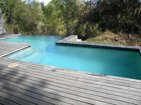 Dulini Leadwood Lodge: Each Room has a Pool