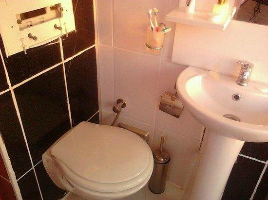 Hotel Rose Bouquets: Ванная комната в номере со слонаной кнопкой
