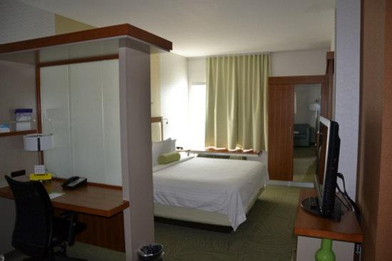 SpringHill Suites San Antonio SeaWorld®/Lackland: Kingsize Suite