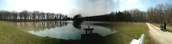 Domaine des Hauts de Loire : vue du lac