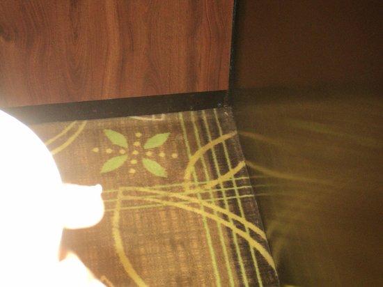 La Quinta Inn & Suites Memphis Wolfchase: carpet in elevator