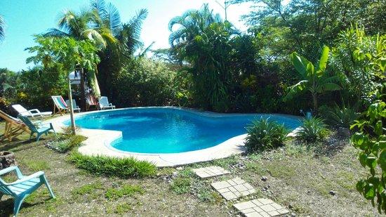 Entre Dos Aguas: Pool im Garten