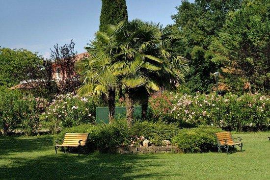 Park Residence Il Gabbiano : Park palm