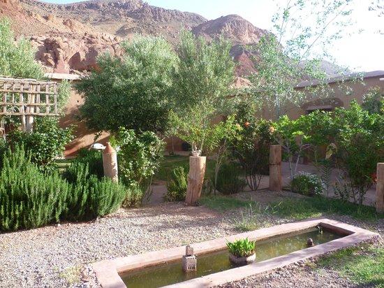 Dar Tougha: garden again