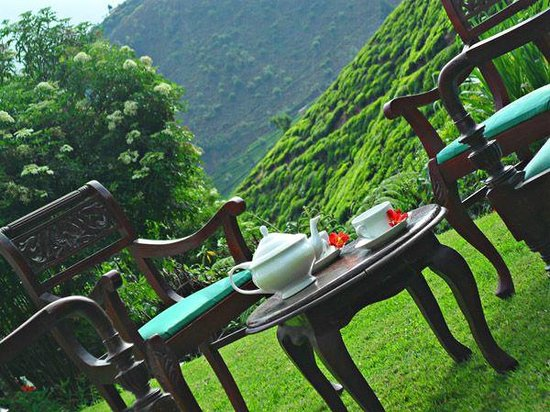 Green Forest Hotel: Outdoor Dining