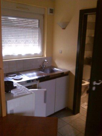 Le Relais de Wasselonne : La kitchenette, pour le prix d'une chambre on loue un studio