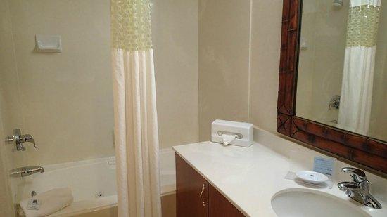 Hampton Inn & Suites Salt Lake City Airport: View of the bathroom