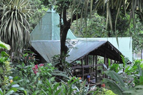 Aguila de Osa Inn: Hotel