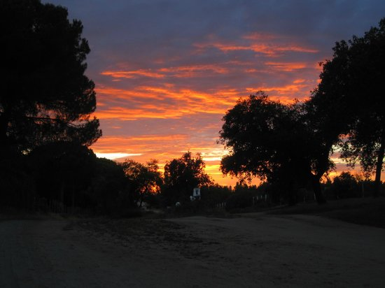 Ardea Purpurea Lodge: El paseo de regreso a Ardea Purpurea al anochecer