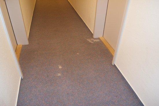 Apart Hotel Sehnde: Abgewohnte Teppichböden mit Löcher
