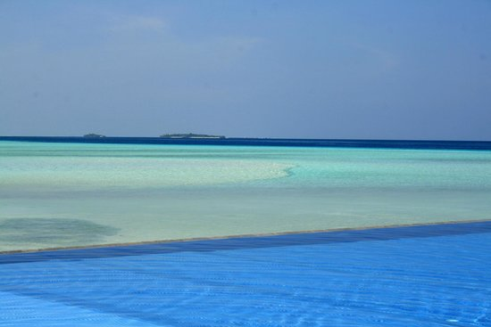 Olhuveli Beach & Spa Maldives : piscine et plage