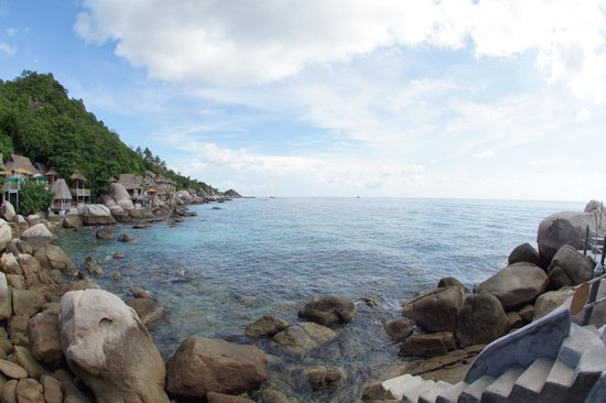 Koh Tao Bamboo Huts: Blick tagsüber / View during the day