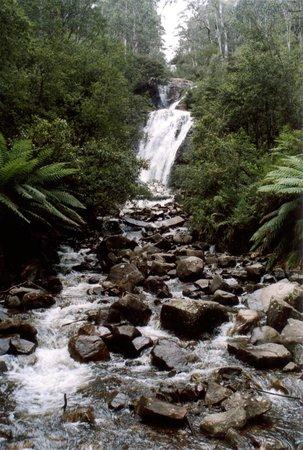 Steavensons Falls: Stevensons Falls