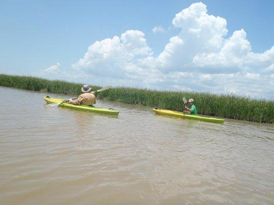 Unique Kayak Cambodia Day Tours: kayaking