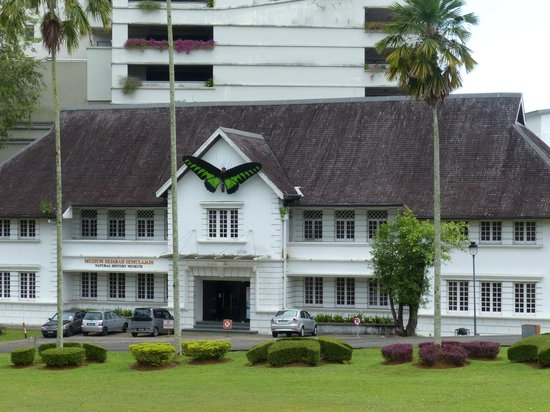The Kebun Residences : Museum