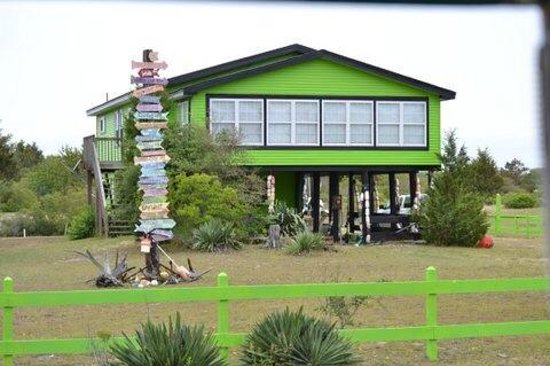 Bobs Wild Horse Tours The Owner Of Grave Digger S Beach House